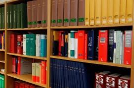 bookcase-335849_1280