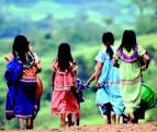 cr-indigenas